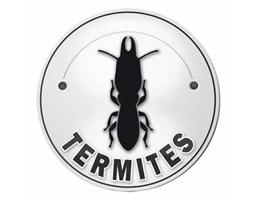 Diagnostic immobilier termites